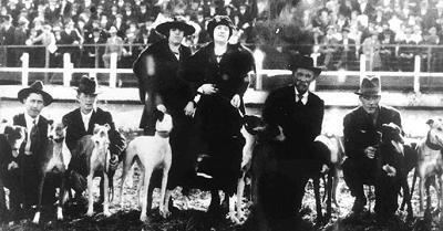 Greyhound-history